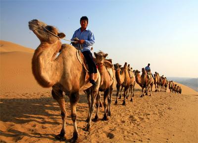 【2013年夏潮大專青年夏令營】內蒙古大漠風光之旅